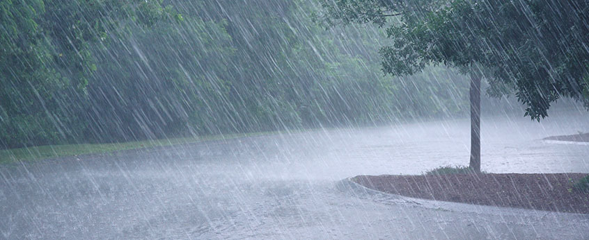 sump pumps are important for keeping your basement dry